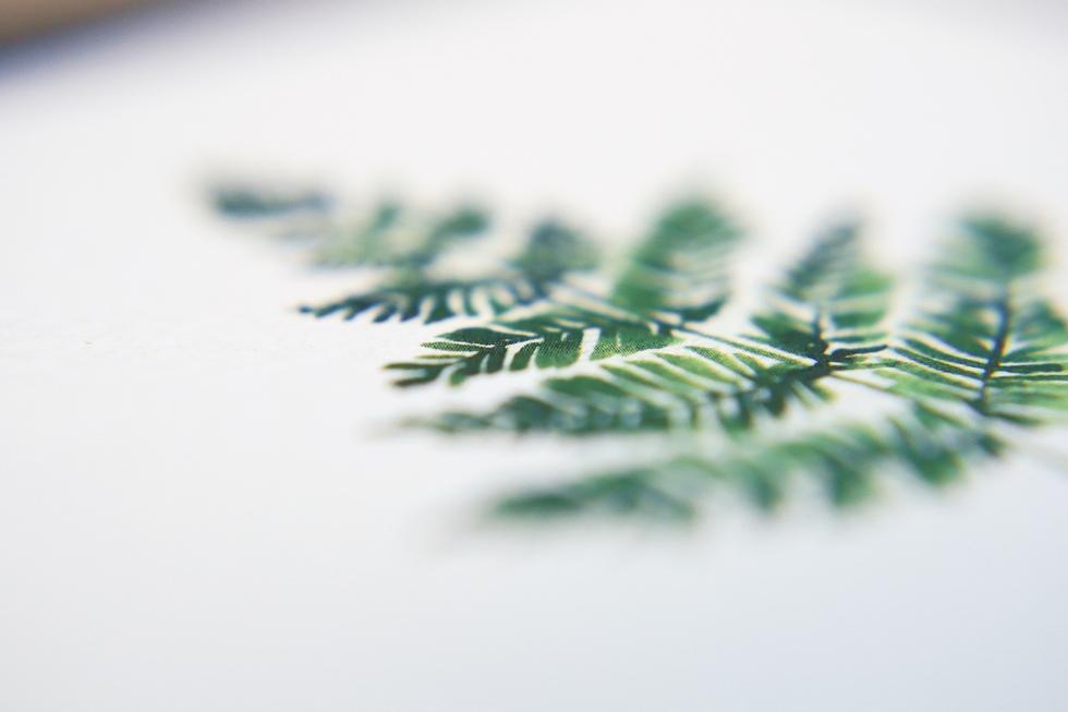 vintage_botanical_060