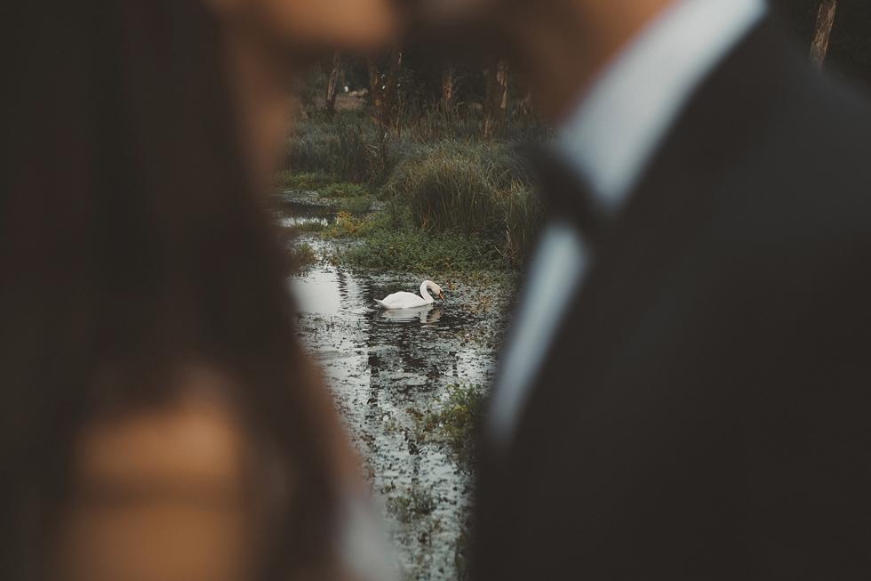 fotograf_slubny_poznan_34_plener